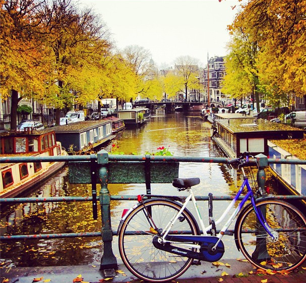 Falling Off Bicycles Instagram Amsterdam