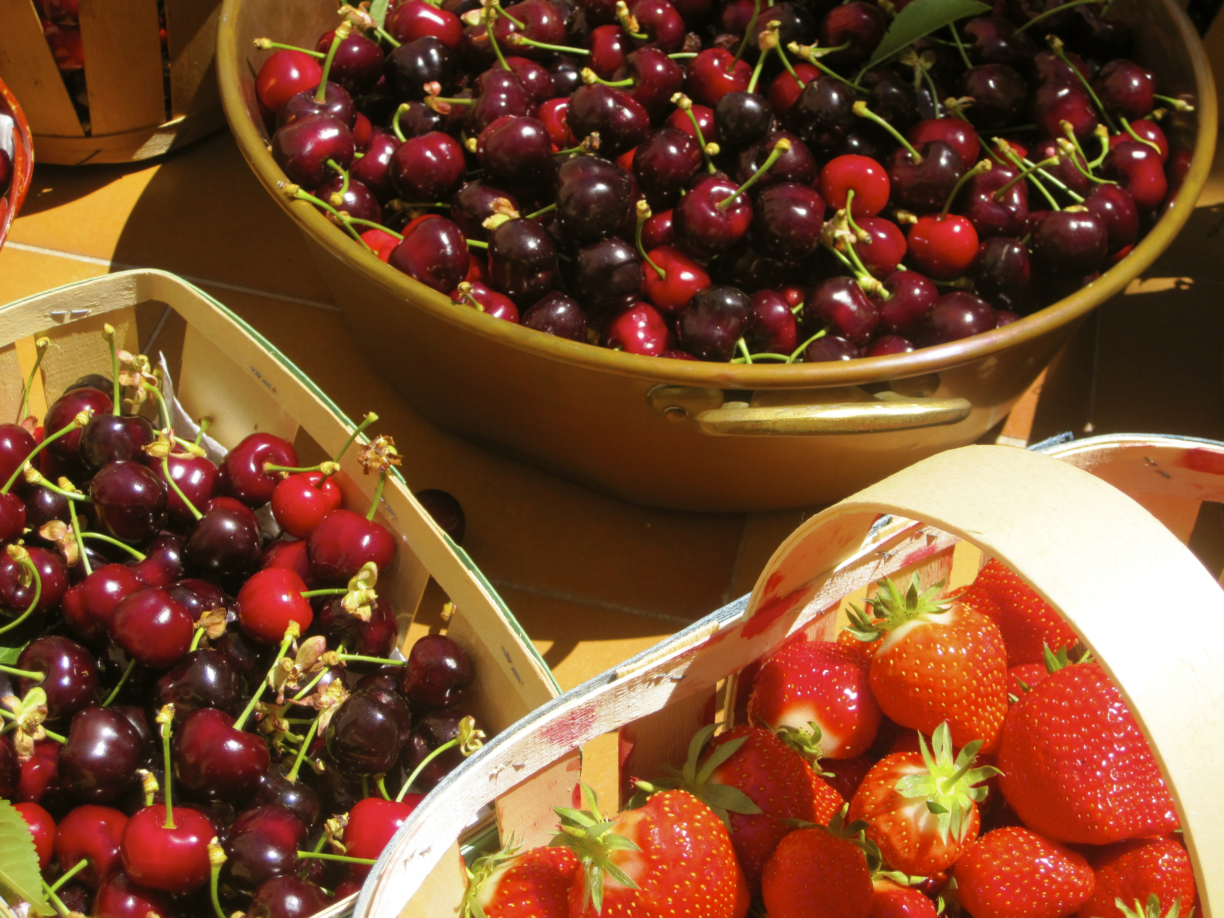 south of France, cherries, fruit
