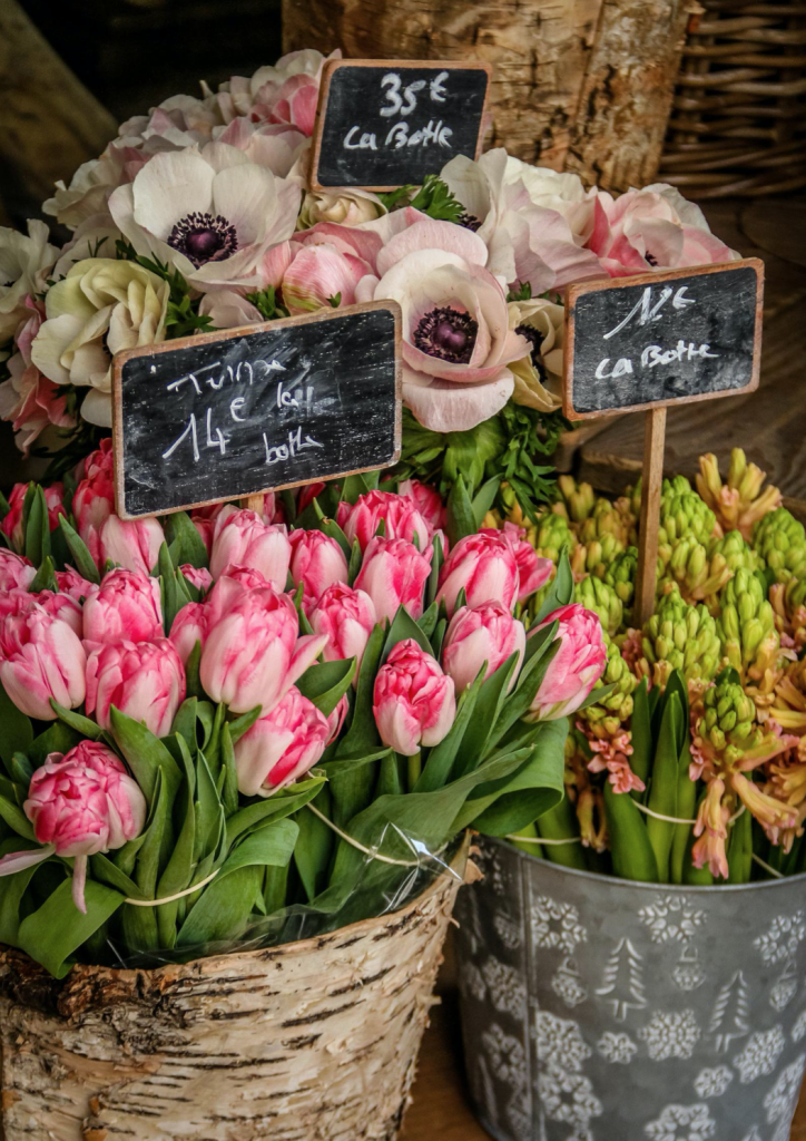Falling Off Bicycles, Paris, Market in Paris, Julia Willard, Julie Willard, tulips